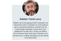 Yam_Levy